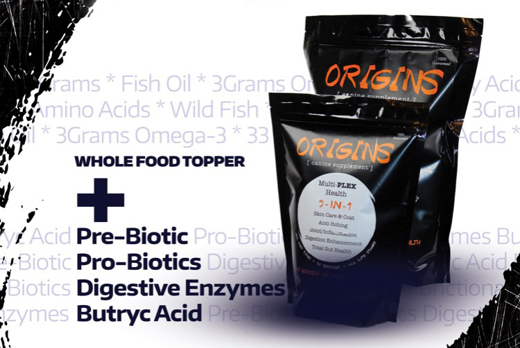 New Products from Rogue!